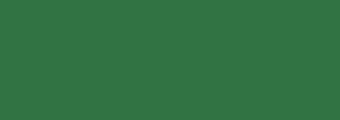 Acheter toile de store CLASSICS SENSATIONS Ref : 2599 HIERBA