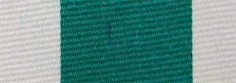 Acheter toile de store Classiques  & Traditions Ref : acrylique A 376 vert - blanc