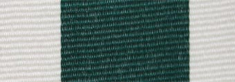 Acheter toile de store Classiques  & Traditions Ref : acrylique A 402 vert sapin - bla