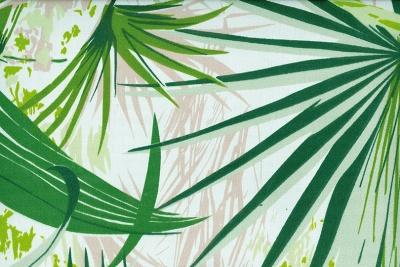 Acheter toile de store Fantaisie Ref : Amazonas