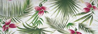 Acheter toile de store RAYEES FANTAISIE Ref : Bali quisqui