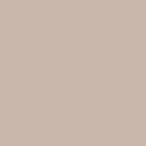 Toile  -  - Ref : beige sablé 502V2-2135C