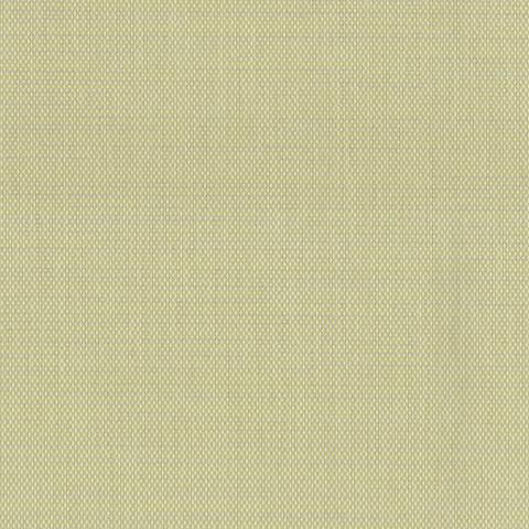 Toile  -  - Ref : blé 7653-50941