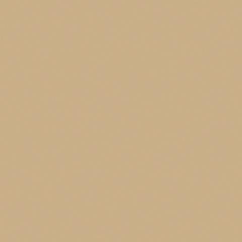 Toile  -  - Ref : caramel 502V2-2141C