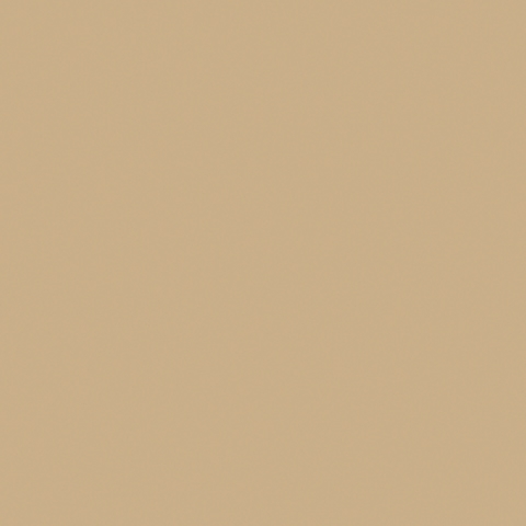 Acheter toile de store Soltis Opaque 6002 Ref : caramel 502V2-2141C