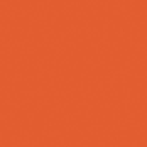 Toile  -  - Ref : carotte 502V2-2172C