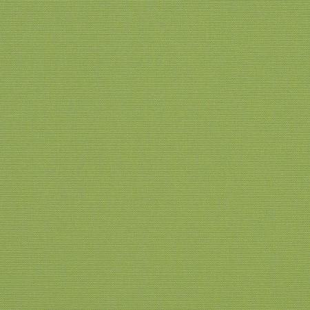 Acheter toile de store  Ref : ginkgo4685-0000
