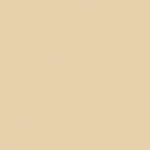 Toile  -  - Ref : vanille 502V2-8861C