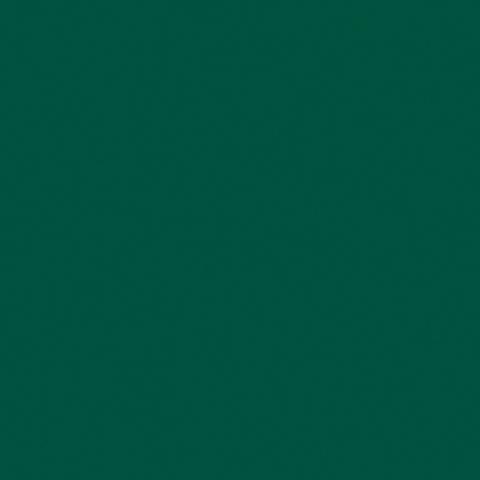 Toile  -  - Ref : vert tennis 502V2-8056C